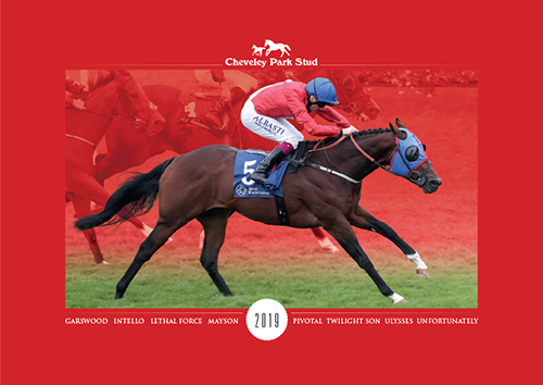 Download the Cheveley Park Brochure 19 (9.45MB)