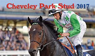 Cleveley Park Brochure 17